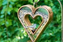 Heart-Shaped Box / by Chrisie Rivers Lewandowski