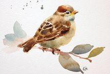 Birds / by Marilyn Fisher