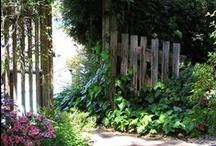 Secret Gardens / by Anne Sogorka Cook