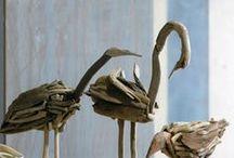 driftwood / by Anne Sogorka Cook