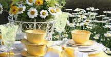 Outdoor Living / Get tips for lawn care and plantings, outdoor decor and entertaining