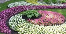 Gardening and Landscaping / Designing, planting ideas, garden paths, garden beds, pruning, weed killing, curb appeal