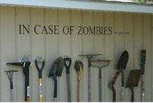 Before the Zombies Come...