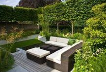 Garden, flowers & outdoor living