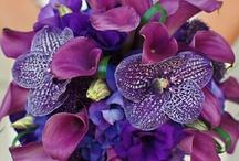 Floral Arrangements / by Rebecca Shook