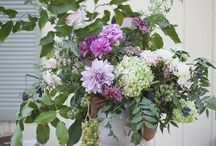 floral. / flowers arrangements, blossoms, and bouquets.