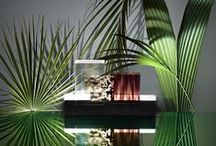 INTERIOR: ARUM / #Arum #Blinds #Black