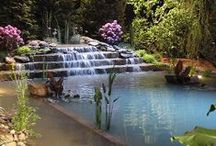 Pool, Pond, Lake, Water Feature