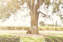 My BFFFFFLs Wedding / by Madison Hadaller