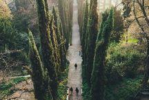Travel / by Mckenzie Barry