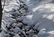 White Winterland