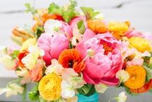 ❧ Bouquets - Flowers and Candy ❧ / by Mary E. Berens-Oney