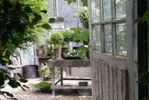 garden + porch + flowers / inside and out