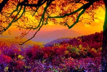 AUTUMN/FALL COLORS / COLORS & SCENES OF AUTUMN/FALL / by ♔Queeniee♔ Northeast