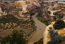 Dinosaur National Monument / This National Monument straddles the Utah/Colorado border and is known for some of the most concentrated fossil remains of dinosaurs found anywhere. The Green River and the wild Yampa River come together in Dinosaur. Our trips will bring you through some of the most beautiful and remote wilderness of the western United States.