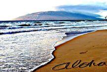 Hang 10 / Hawaii Travels / by Dana
