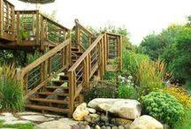 Landscape Design / My job, my passion! / by Abby Rupsa