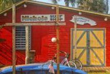 Fun In The Sun - Florida! / florida