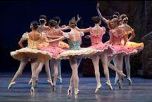 Ballerina, Ballerina! / by Sandy English