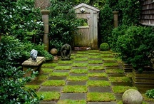 Gothic Garden / by Tanya Young