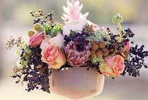 Cute Centerpieces / Centerpiece ideas to inspire and adore