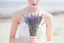 Pretty Little...Lavender / A collection of images to inspire and adore