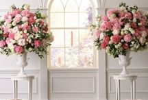 Pretty Little...Urn / A collection of images to inspire and adore