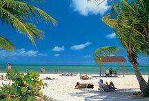 Key West / by Roberta Sutter