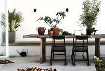 terrace / / garden
