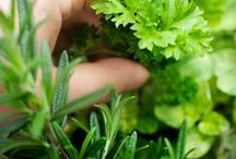 Growing Food / Ways to encourage your green thumb