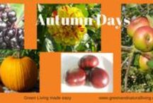 Autumn Days / Autumn is a time of abundance and beautiful colours