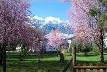 Primavera en El Bolsón / Primavera en El Bolsón y en El Mirador Hostel