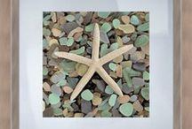 sea shells n beach glass
