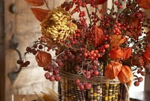 .Fall.Thanksgiving. / by Kathleen Ruth