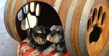 Pet Furniture / Pet furniture does not have to be an eyesore. I have saved ideas for pet houses as well as pet-friendly furniture that blends in your home.