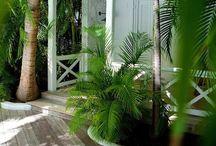 My dream beach house / by Monika Gurgul