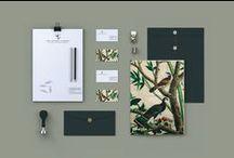 Visual ID & Packaging