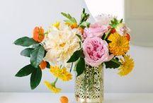 flowers / by Caroline thruston