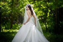 Marketing Material For Wedding Photographers