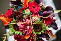Floral Arrangements / by Social Tables