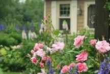 Backyard Living & English Garden Dreams / by Briana Thomas