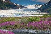 Alaska / Alaska / by Sadie Kincaid (Simeth)