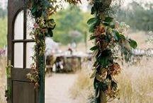 Tips & Tricks - Gardening / by Julia Johnson