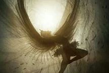 Winged / by Claudia McGee