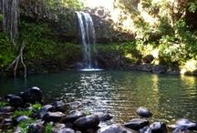 Fun Stuff to Do / by Maui Hawaii