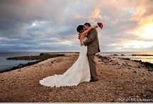 Maui Weddings / Thinking of getting Maui'd? These resources will come in handy.