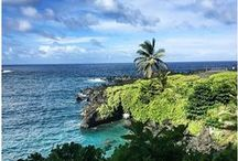Maui Tips / Make your trip to paradise a successful one with these Maui, Hawaii travel tips.