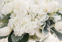 floral design   white wedding