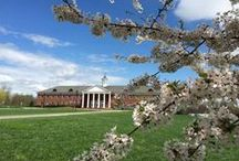 Campus Tour / Want to know what Patrick Henry College looks like? Enjoy these shots and scenes from PHC's beautiful campus.