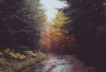 October skies / by Gina Rini-Reese